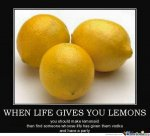 Life gives you lemons.jpg
