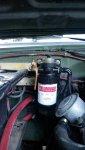 Fuel filter 1.jpg