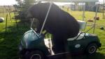 papabear-golf-cart-11215-reddit-ftre_1havig3sncv5o1kzcxjqiocr0i.png