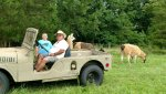 Jeep Bill Wyatt and llama.jpg