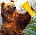 Papa Bear Beer.jpg